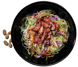 Chinwa Roasted Sesame Chicken Salad